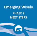 Emerging Wisely - Phase 2 Next Steps